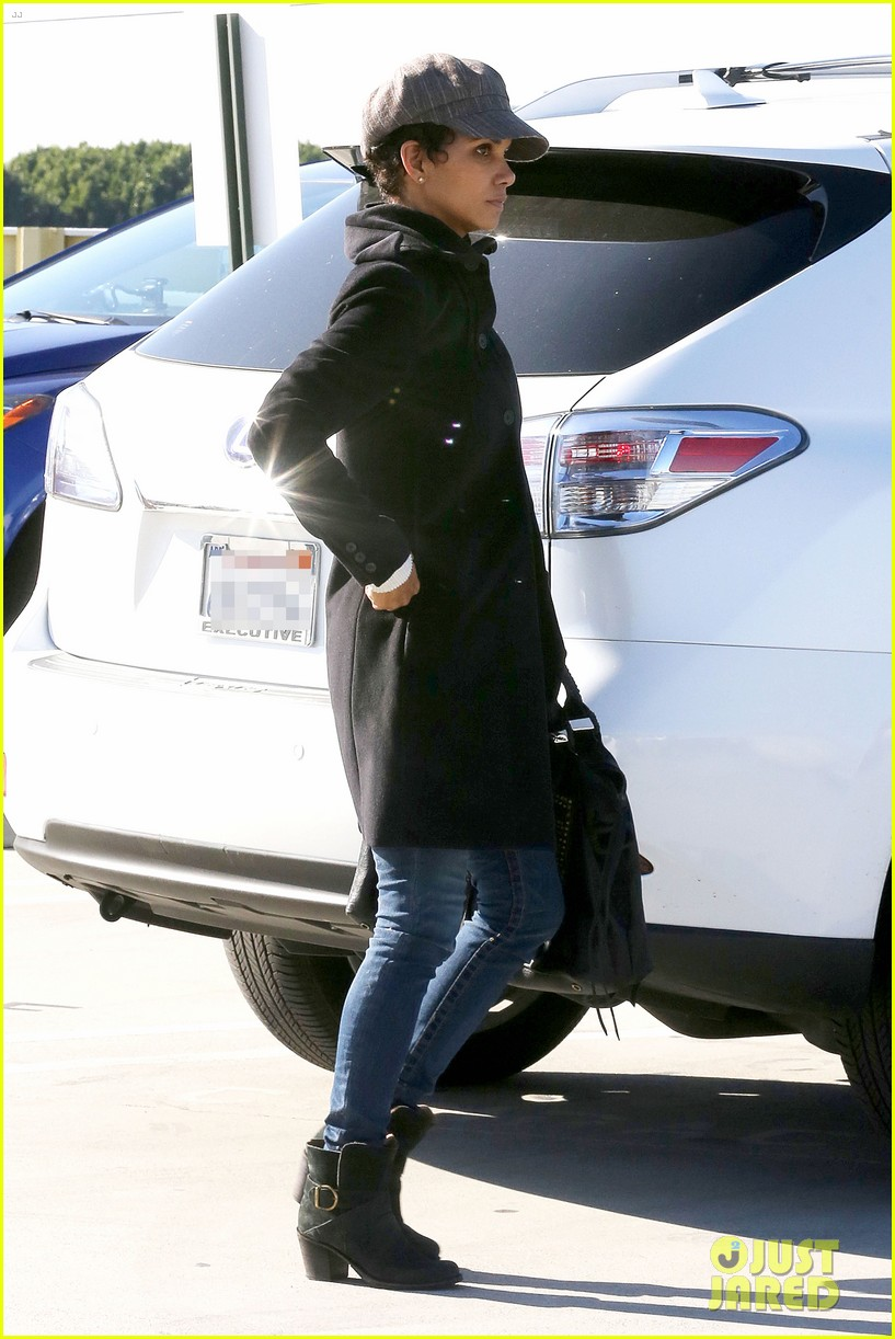 halle berry back at the vet with pet cat 122801874