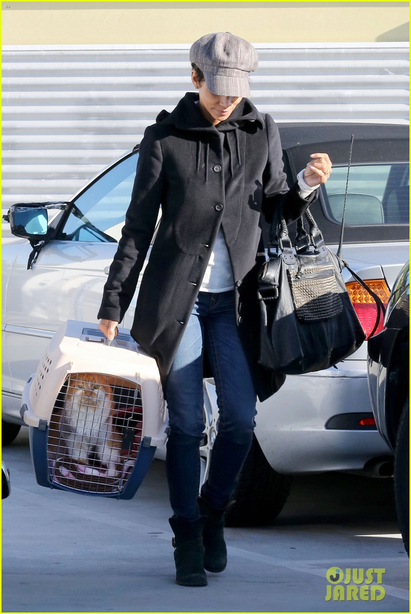 halle berry back at the vet with pet cat 14