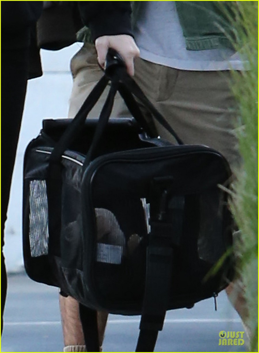 miley cyrus recording studio session with pet pooch bean 04
