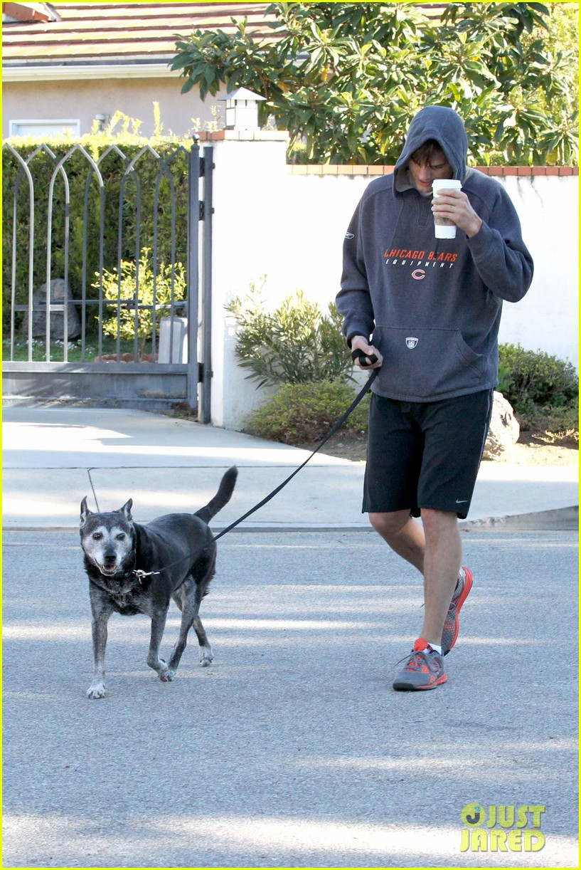 mila kunis ashton kutcher doggy duty duo 052786239