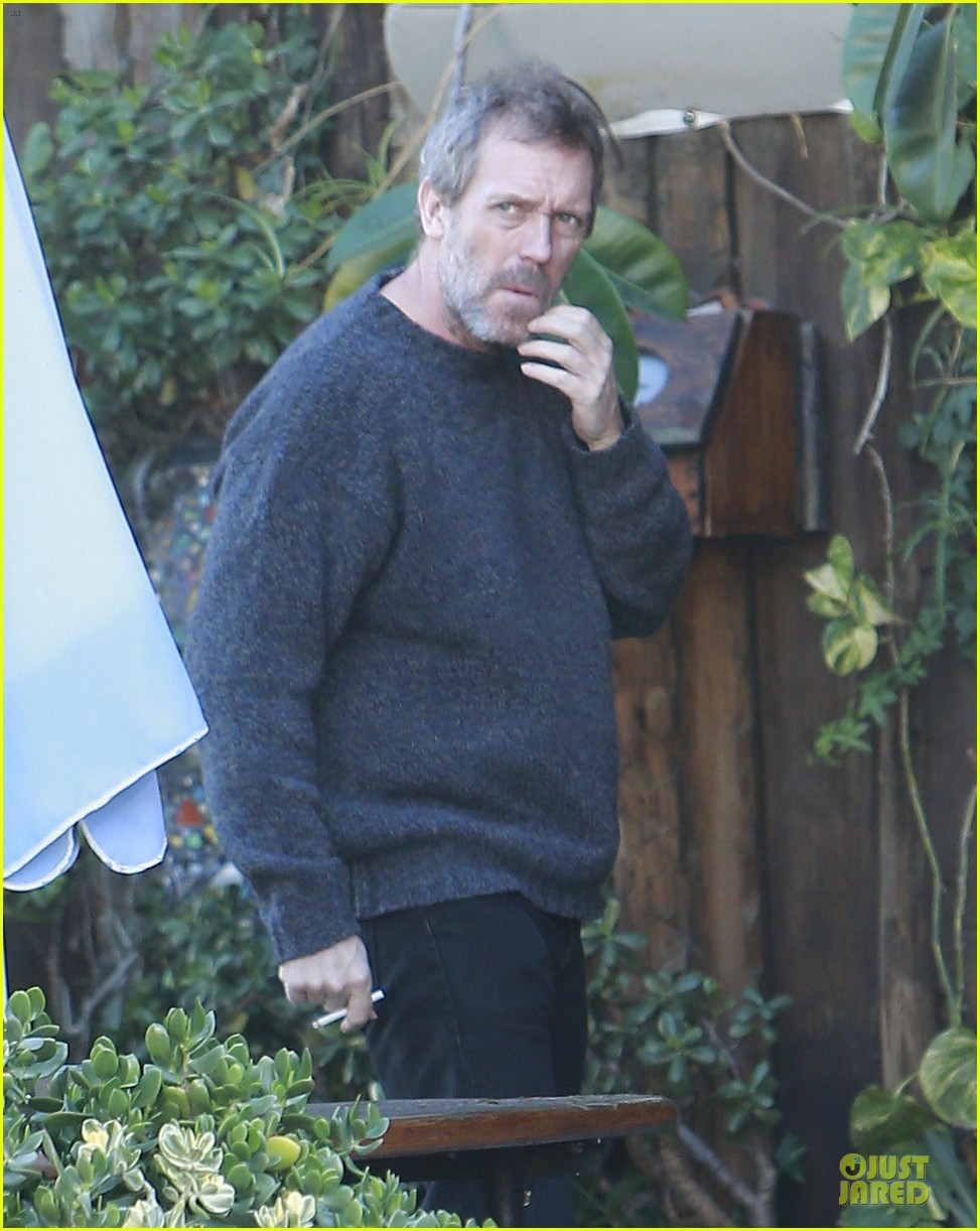 the oranges director fought for hugh laurie 02