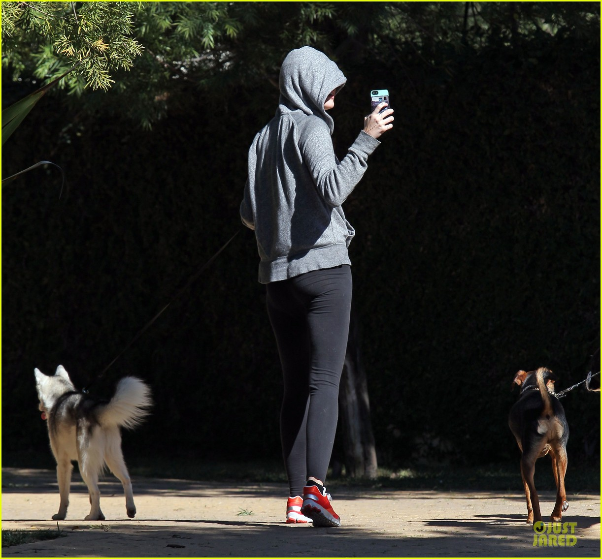 miley cyrus hoodie walk with pet pooch 052800376