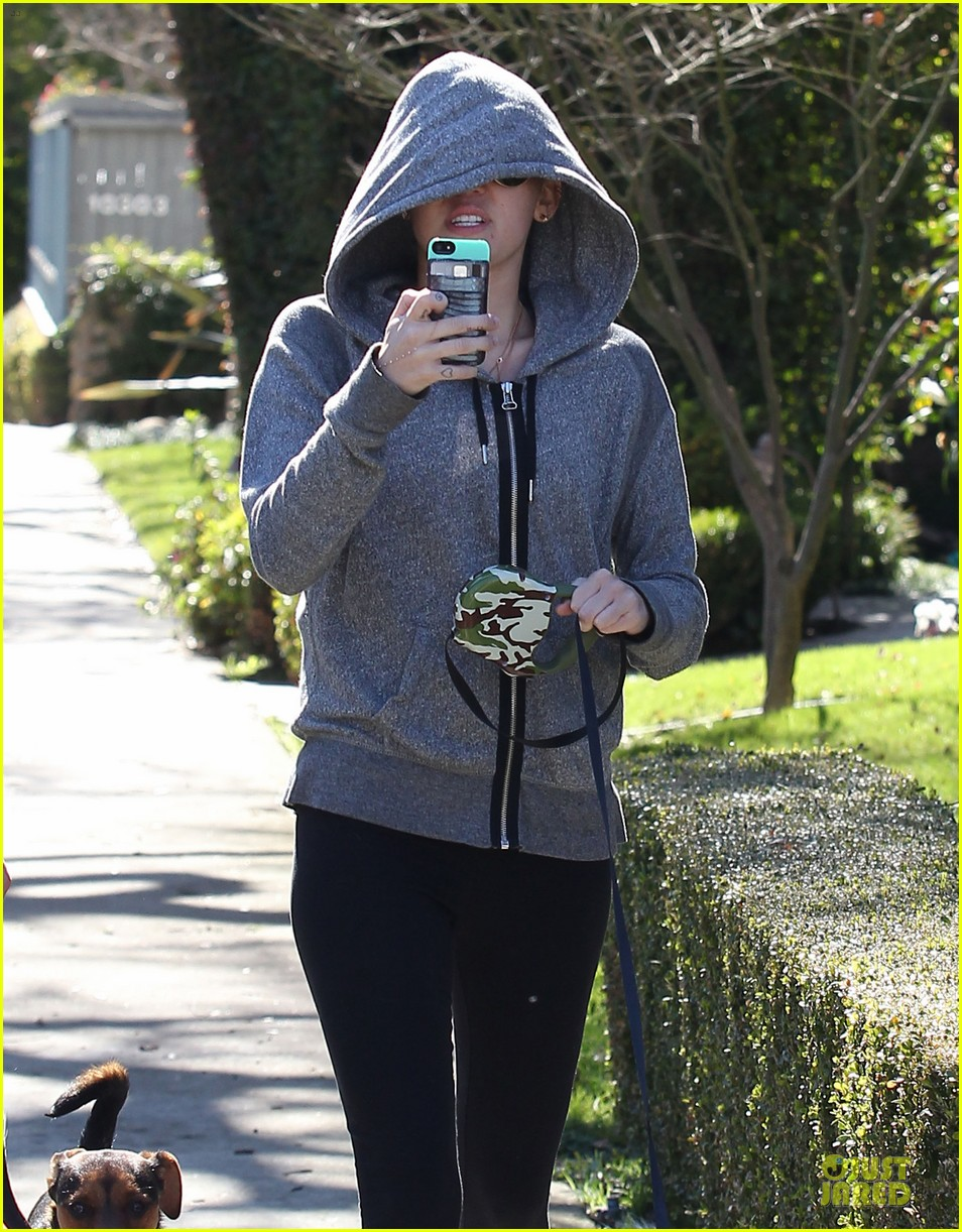 miley cyrus hoodie walk with pet pooch 132800384
