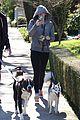 miley cyrus hoodie walk with pet pooch 12