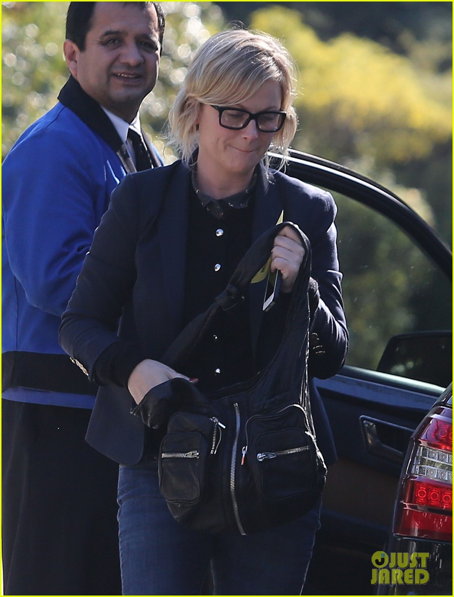 amy poehler birthday party with archie abel 10