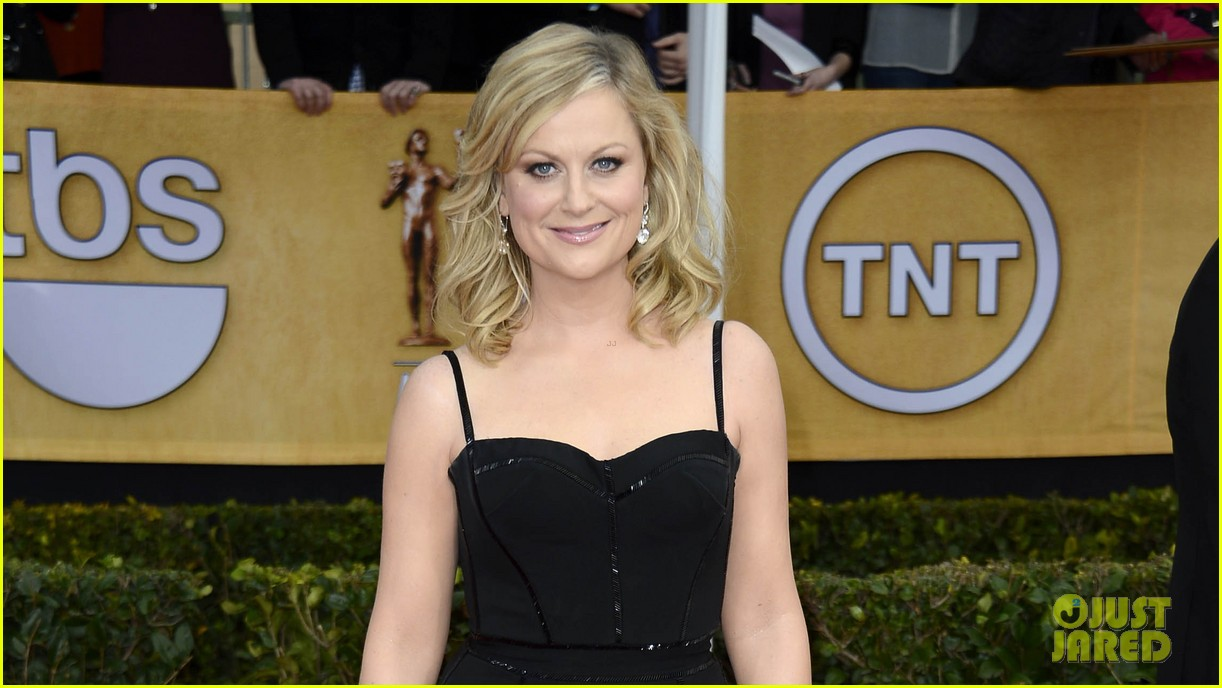 amy poehler tina fey sag awards 2013 red carpet 032799700