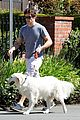 james marsden dog walkin wednesday 07