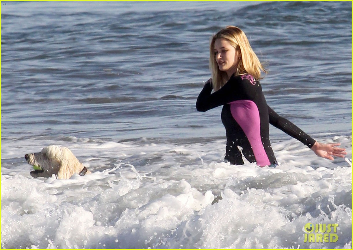 rosie huntington whiteley beach day with her pup 12