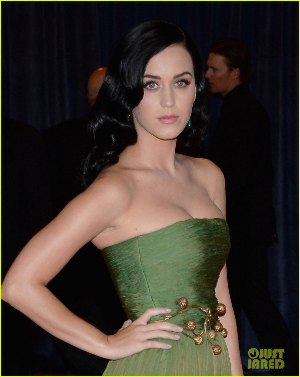 katy perry white house correspondents dinner 2013 red carpet 02