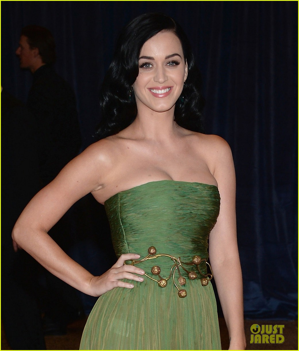 katy perry white house correspondents dinner 2013 red carpet 03