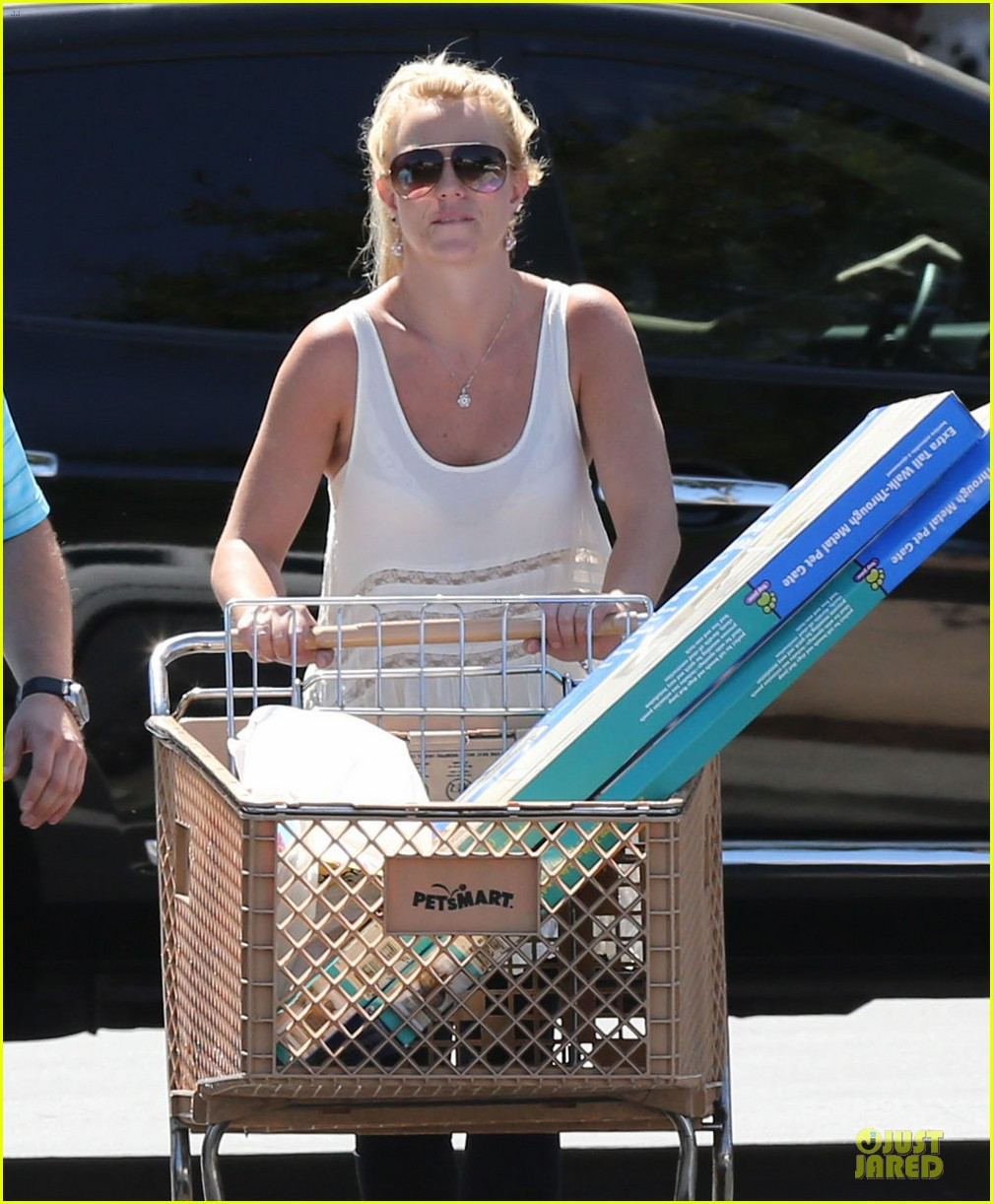britney spears petsmart pet shopping 10