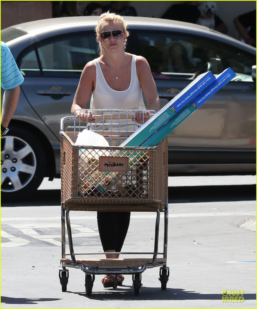 britney spears petsmart pet shopping 112854219