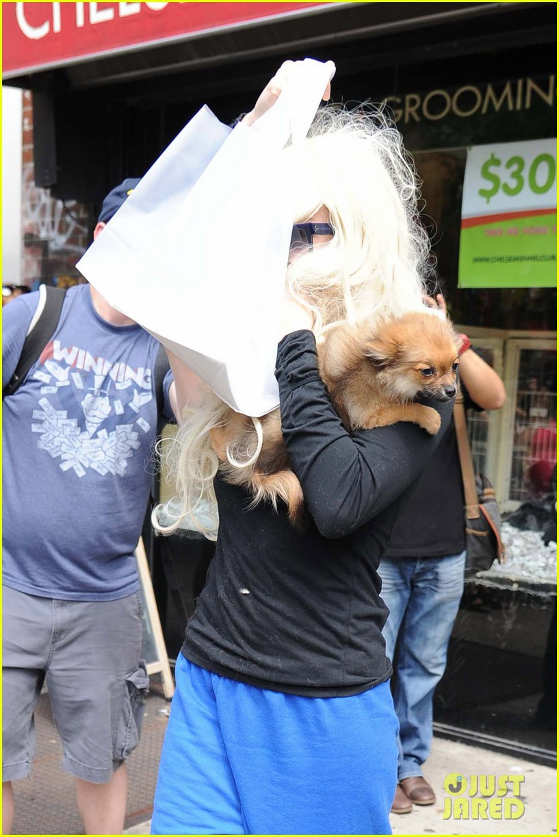 amanda bynes hides face behind dog after court day 02