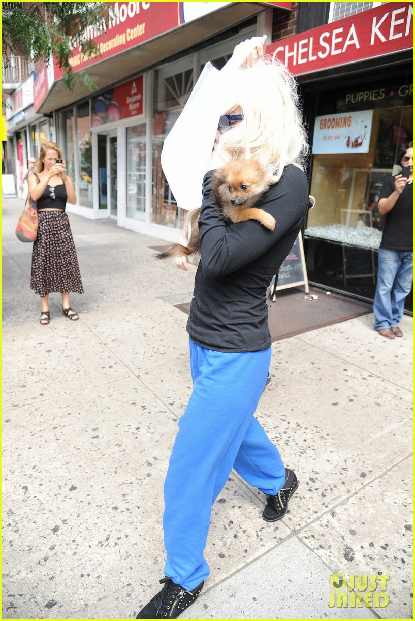 amanda bynes hides face behind dog after court day 092907301