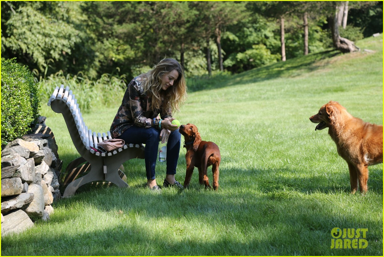 blake lively takes ryan reynolds dog to the park 04