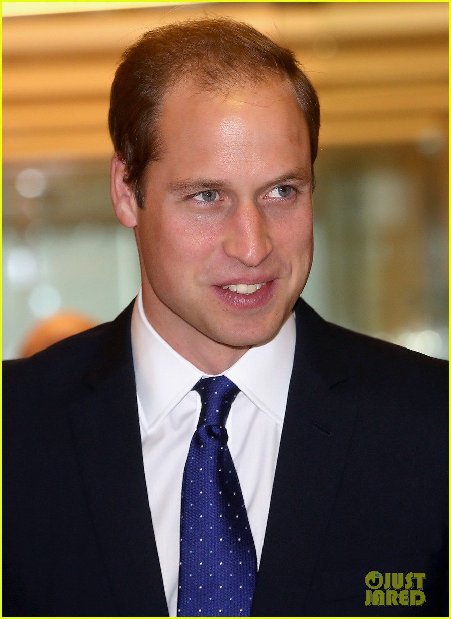 prince william prince harry help broker billion dollar deal during 911 fundraiser 16