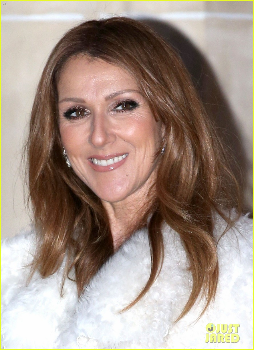 celine dion promotes loved me back to life in france 22
