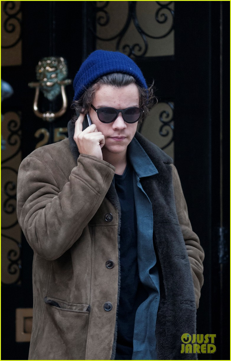 harry styles wishes followers a happy thanksgiving 013002038