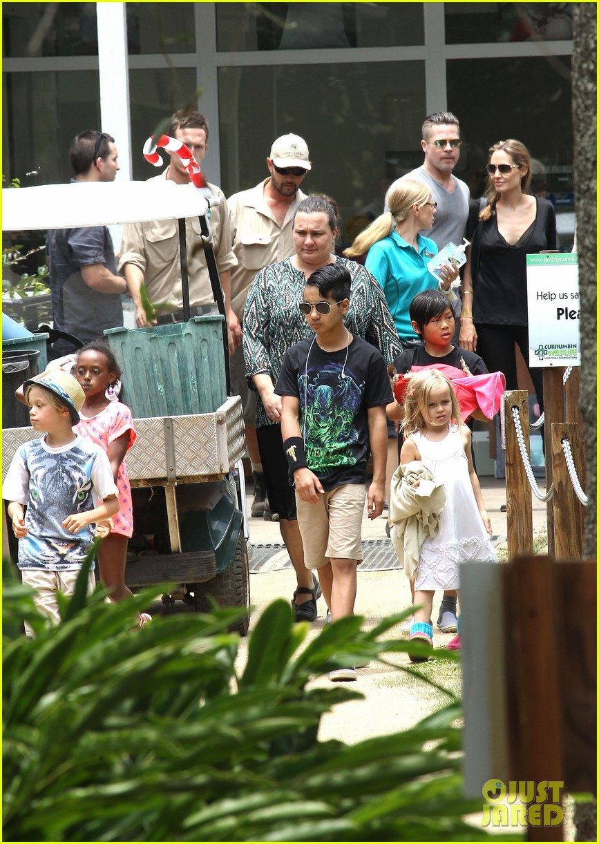 angelina jolie brad pitt visit the zoo with all six kids 05