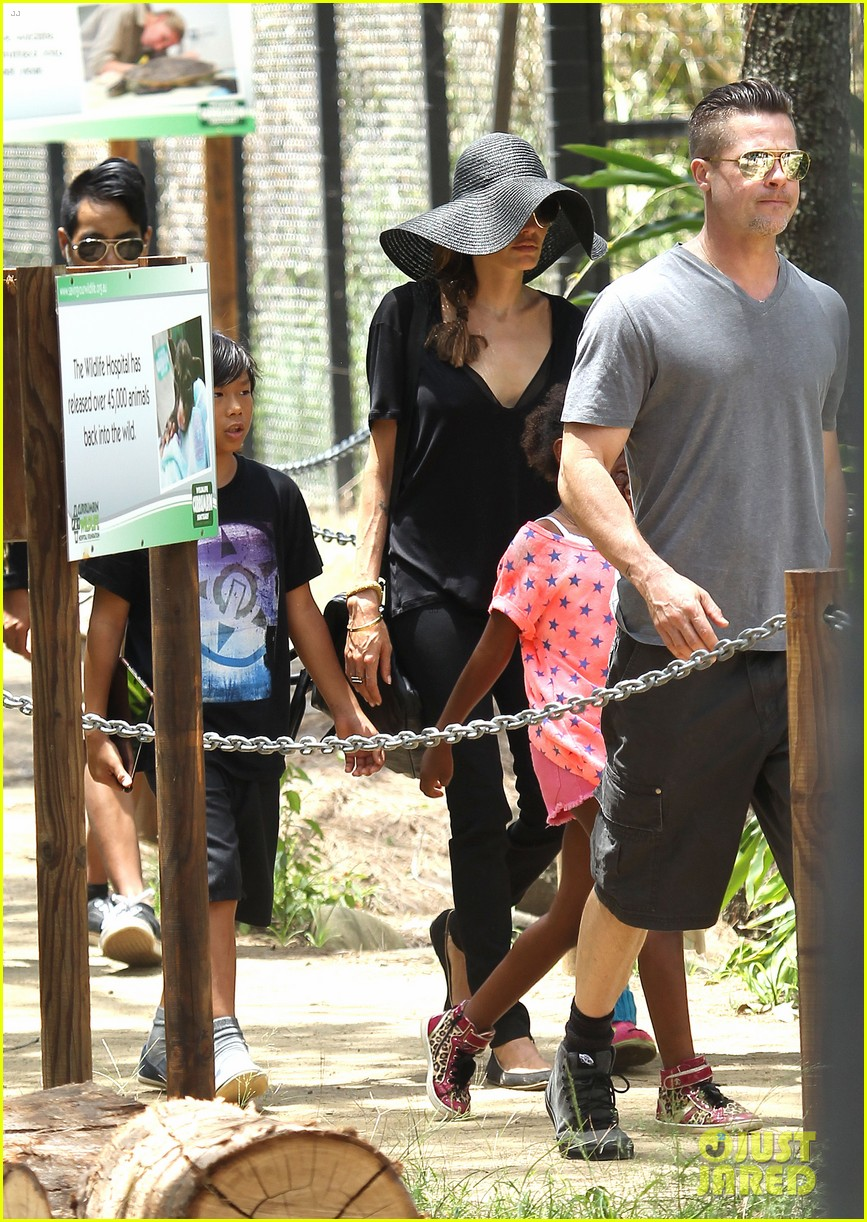 angelina jolie brad pitt visit the zoo with all six kids 14