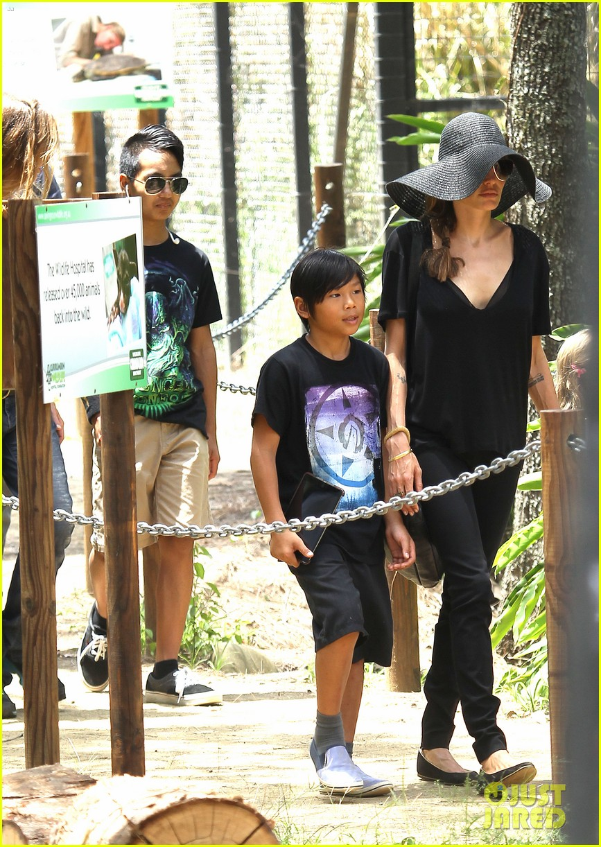 angelina jolie brad pitt visit the zoo with all six kids 15