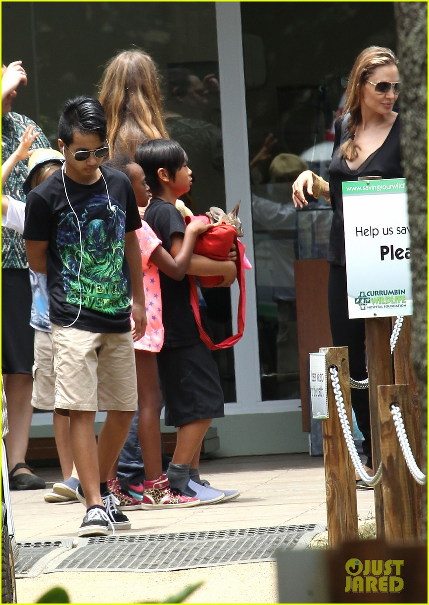 angelina jolie brad pitt visit the zoo with all six kids 543018290