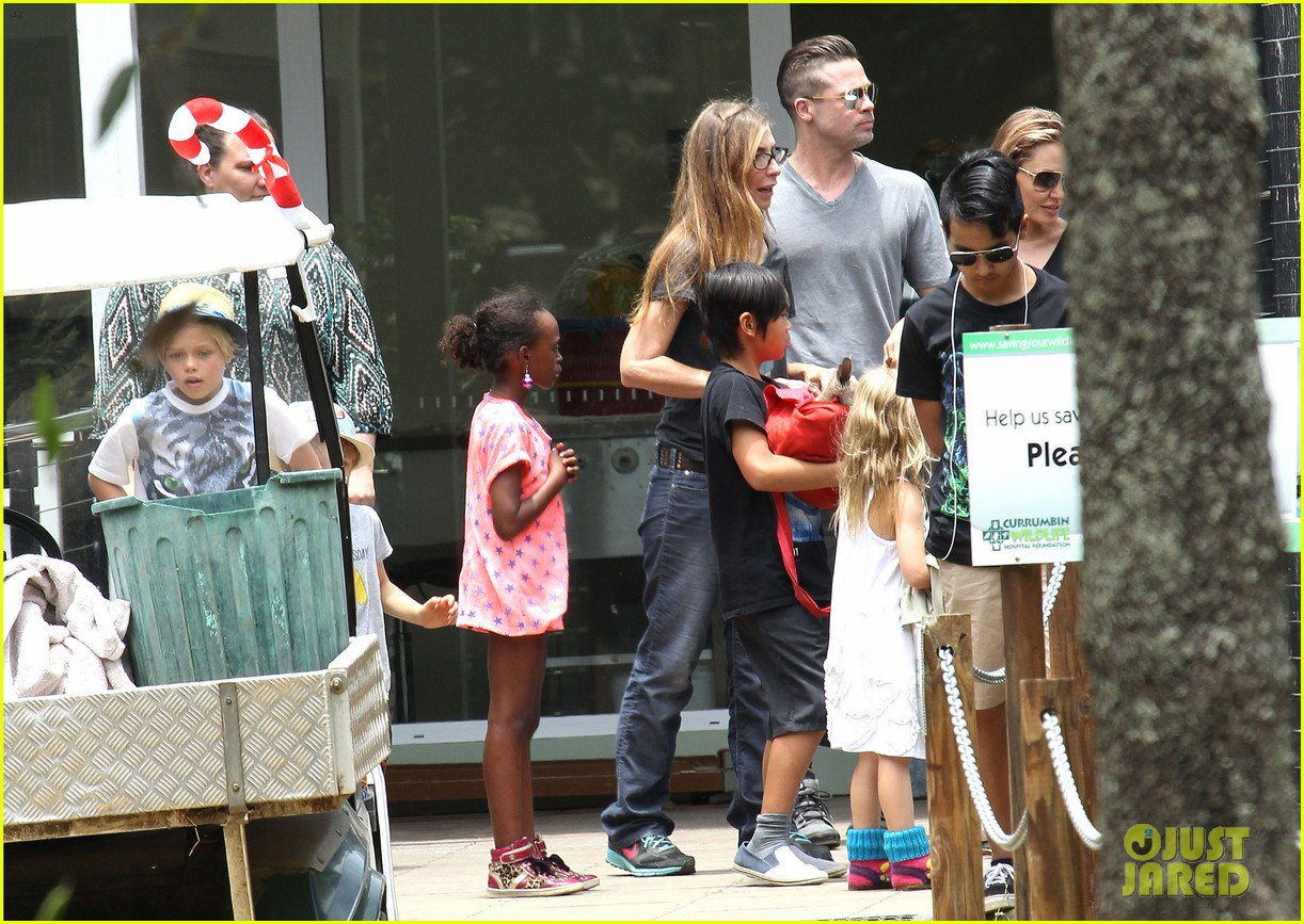 angelina jolie brad pitt visit the zoo with all six kids 603018296