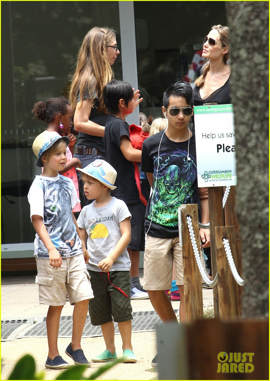 angelina jolie brad pitt visit the zoo with all six kids 643018300