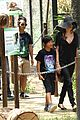 angelina jolie brad pitt visit the zoo with all six kids 16