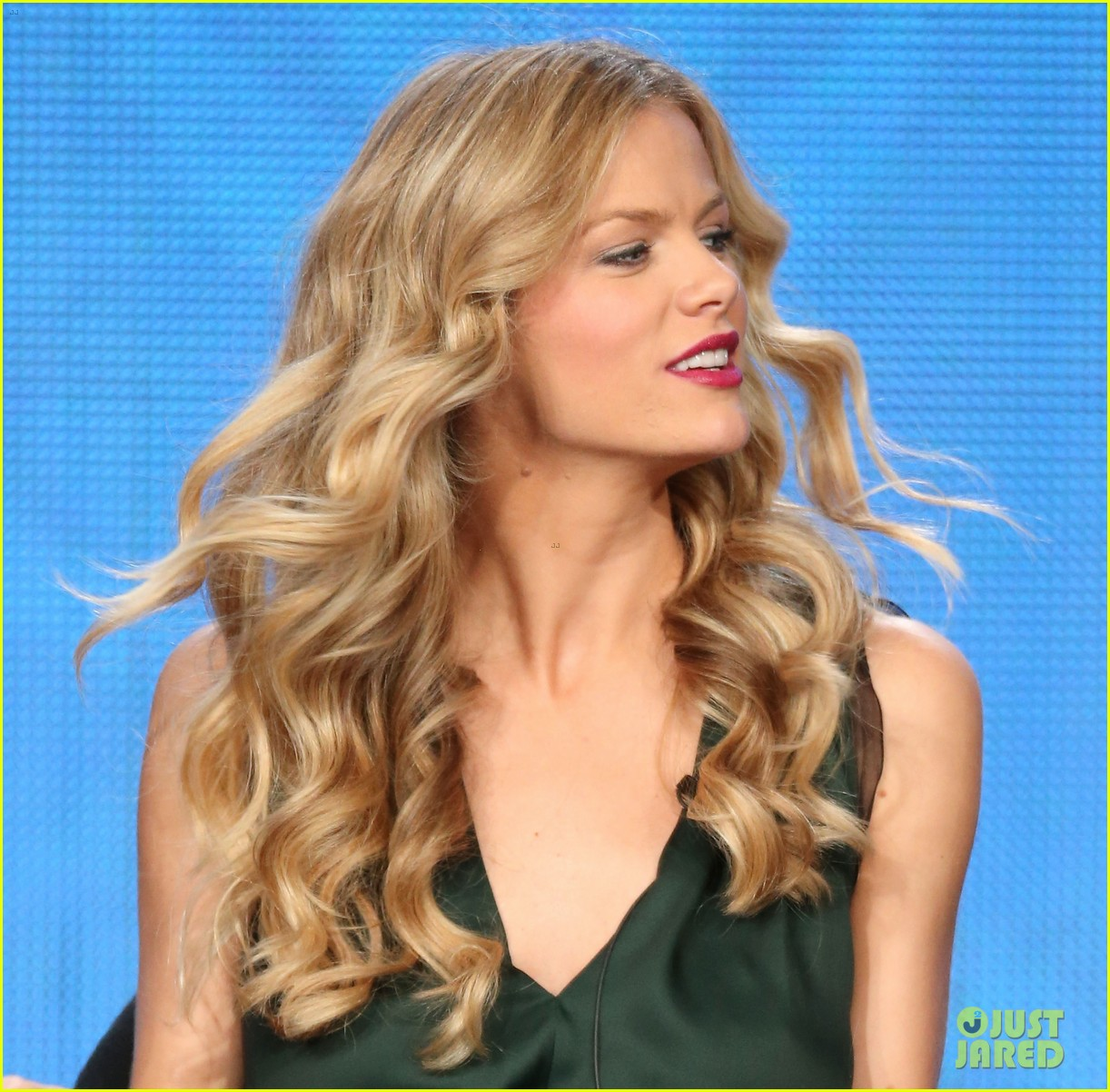 brooklyn decker james van der beek cbs tca panel 2014 083032167
