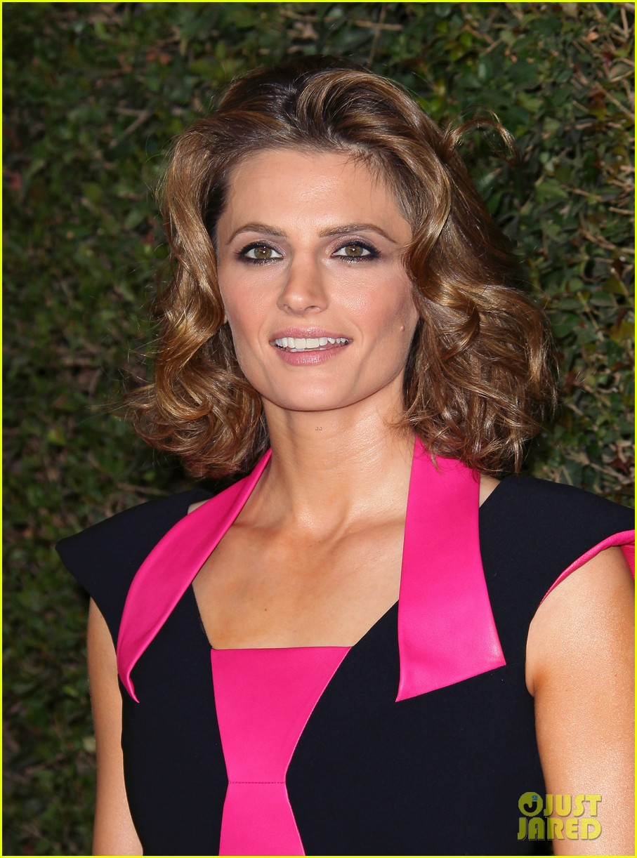 Stana Katic Amp Sasha Alexander Writers Guild Awards 2014