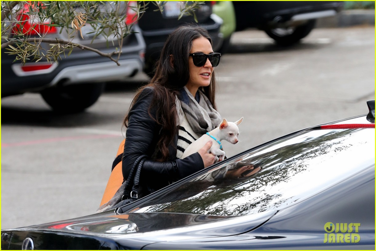 demi moore takes her tiny dog to yoga class 05
