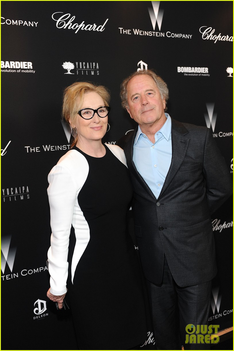 meryl streep christoph waltz pre oscars party attendees 15