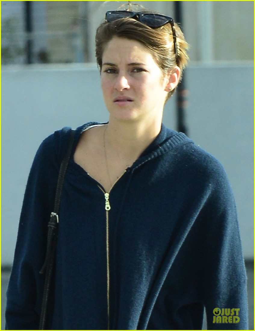 shailene woodley theo james continue to invest in divergent 103066235