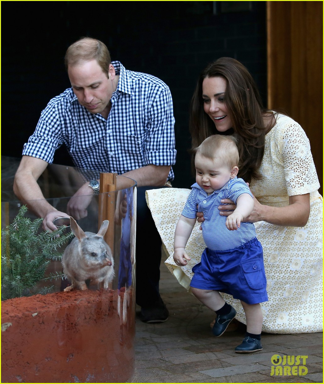 prince george goes to the zoo kate middleton prince william 083095509