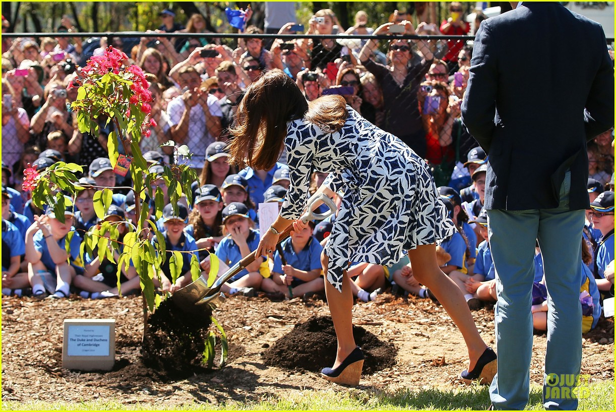 kate middleton prince william plant tree in australia 013093680