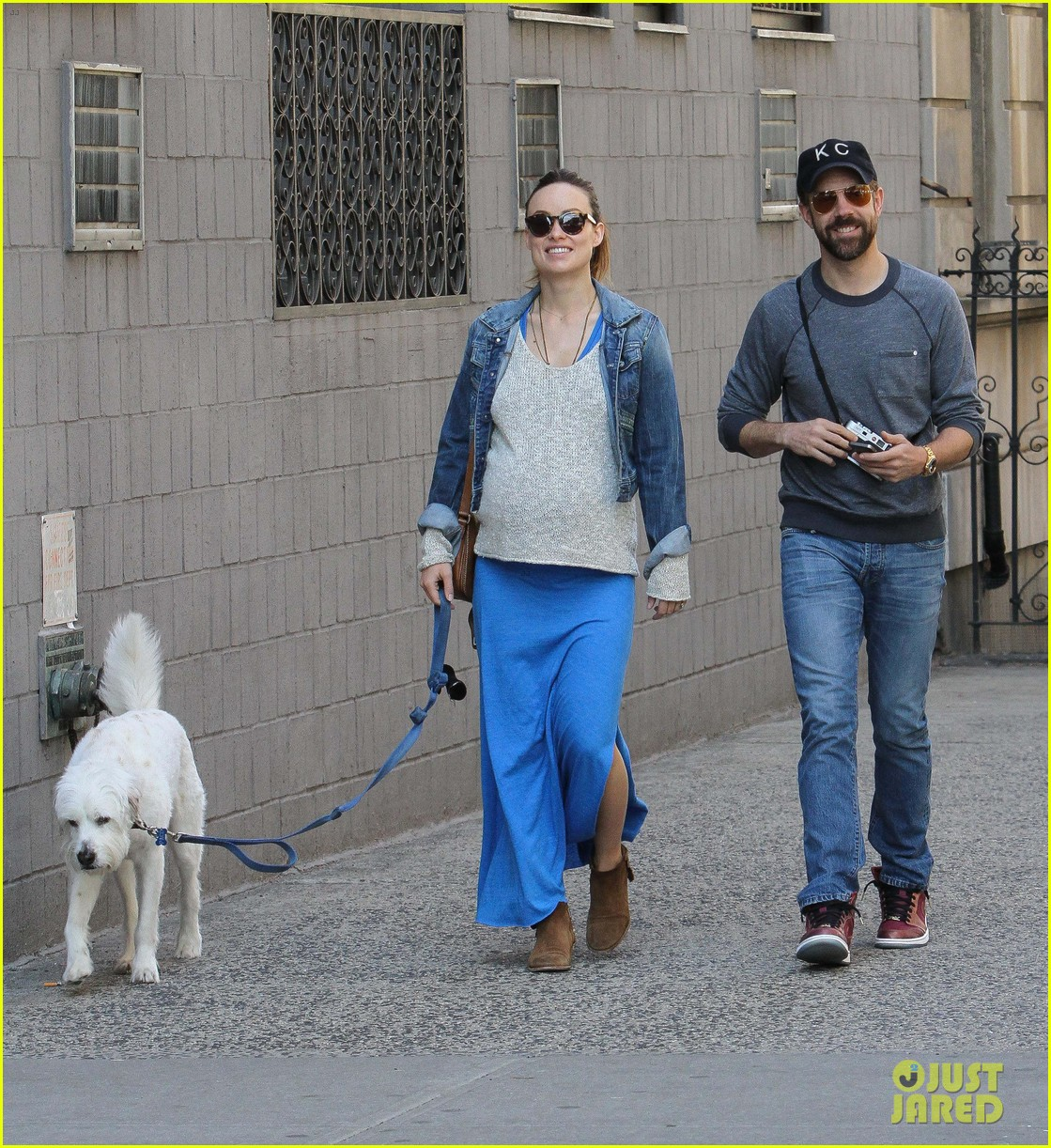 olivia wilde growing baby bump dog walk 033092177