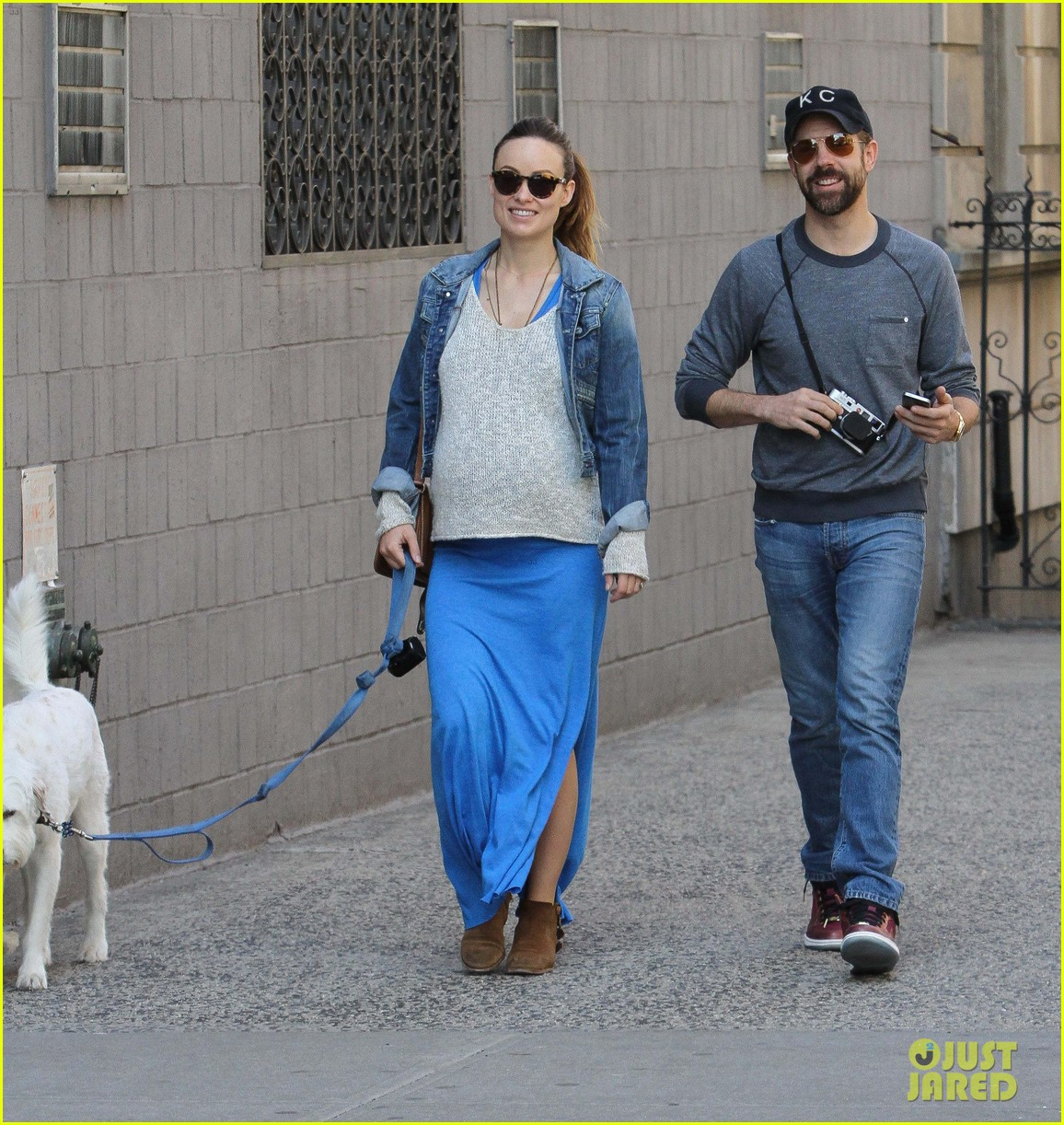 olivia wilde growing baby bump dog walk 07