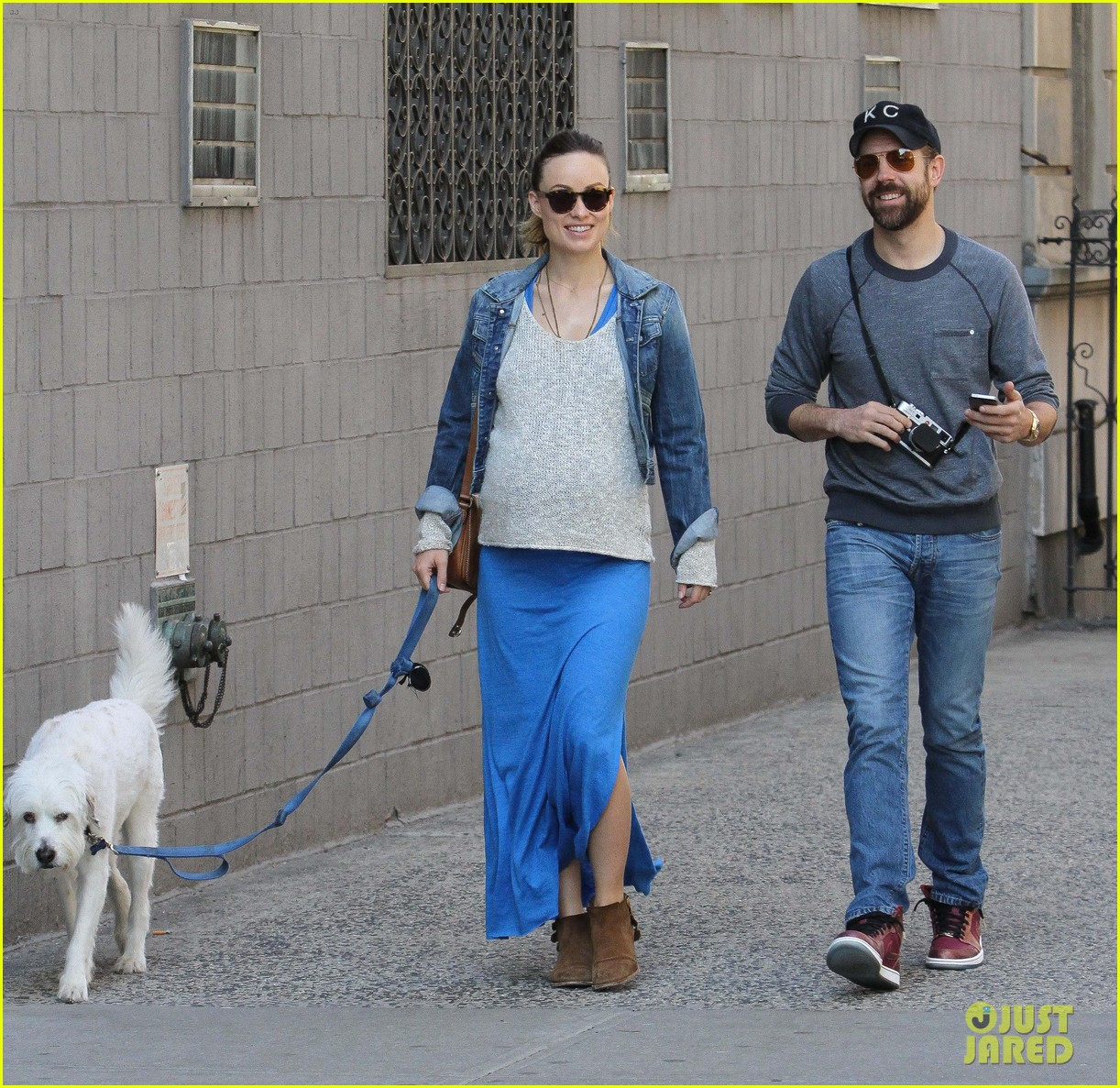 olivia wilde growing baby bump dog walk 09