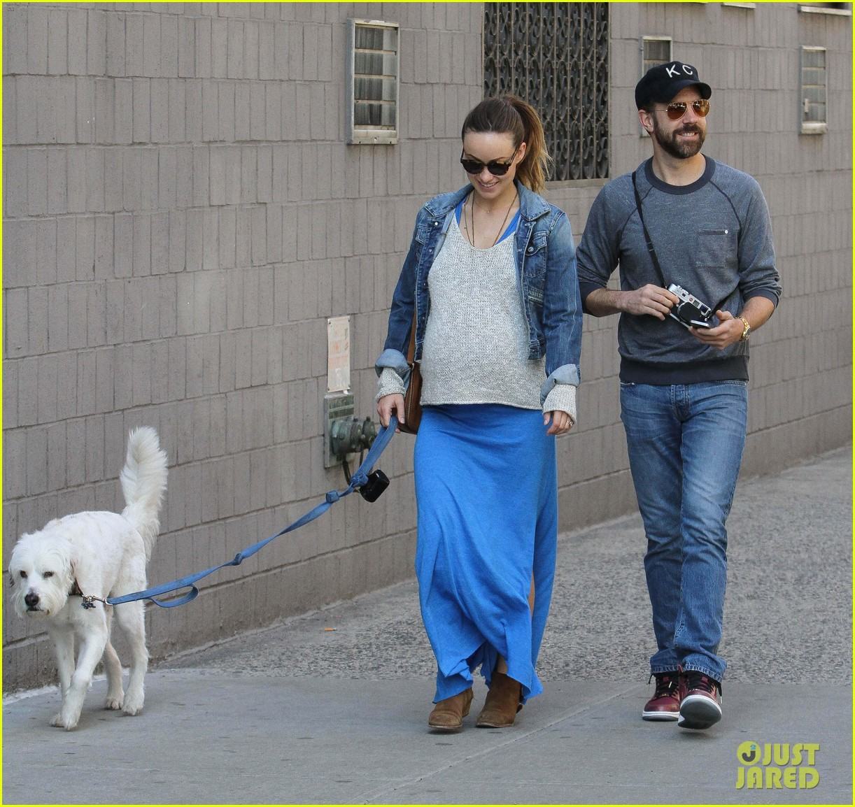 olivia wilde growing baby bump dog walk 15