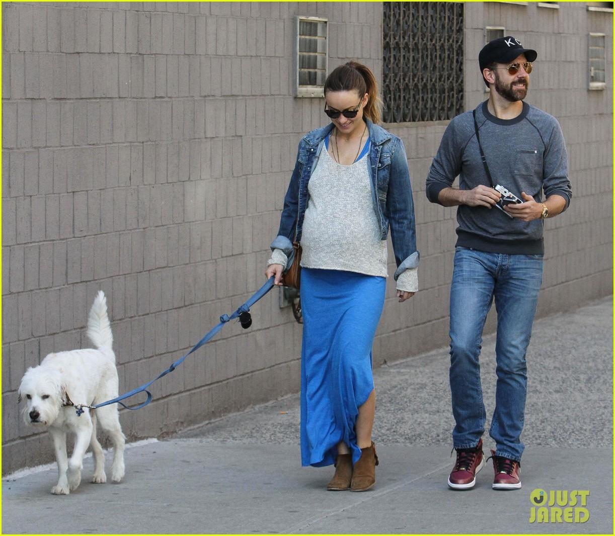 olivia wilde growing baby bump dog walk 17