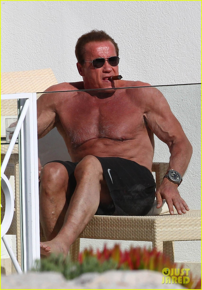 arnold schwarzenegger shirtless buff cannes 043117248