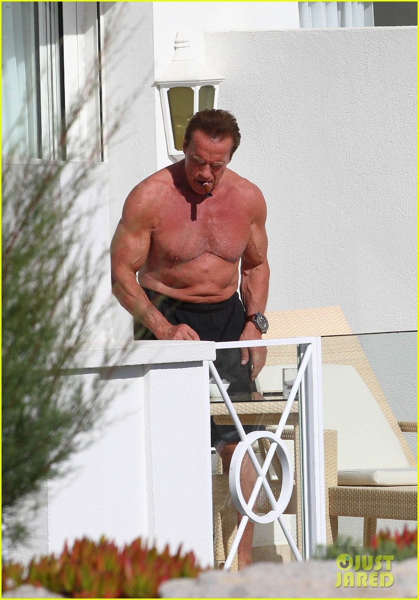 arnold schwarzenegger shirtless buff cannes 103117254