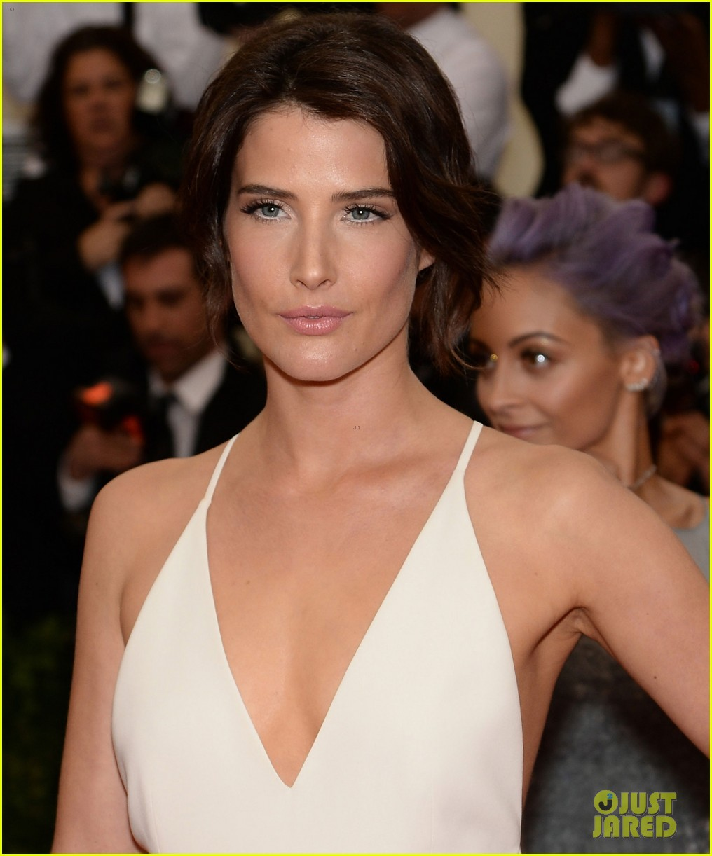 cobie smulders shines on met ball 2014 red carpet 01
