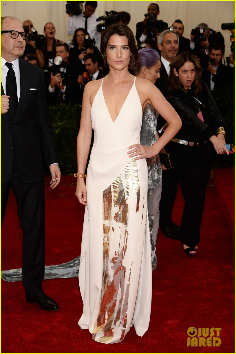 cobie smulders shines on met ball 2014 red carpet 04