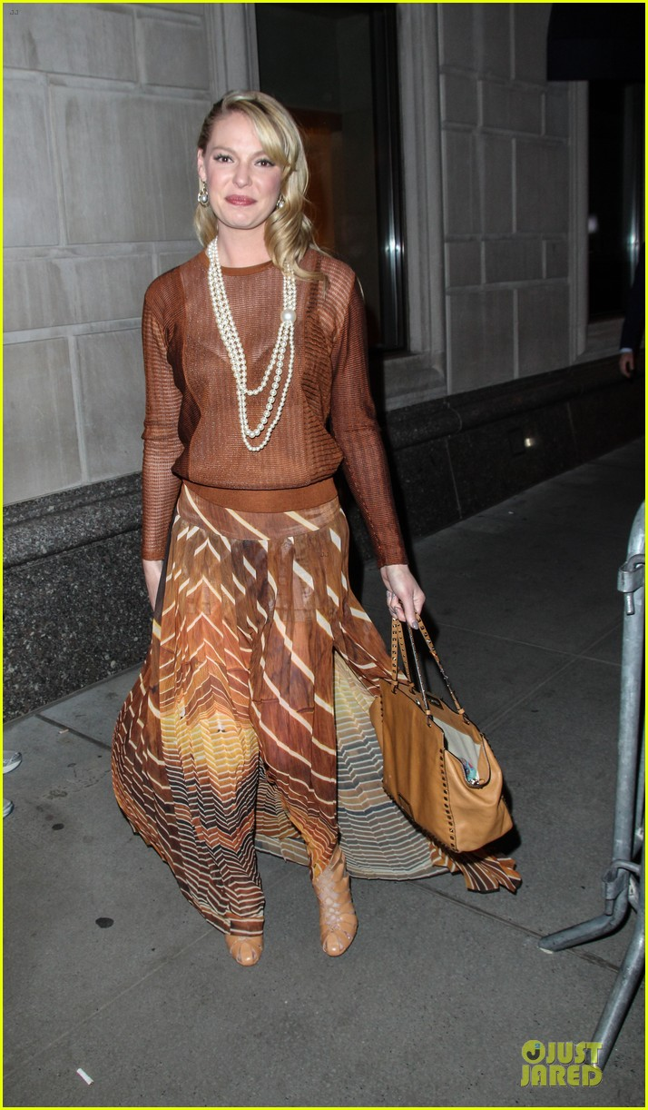 katherine heigl sheerly noticed in nyc 12
