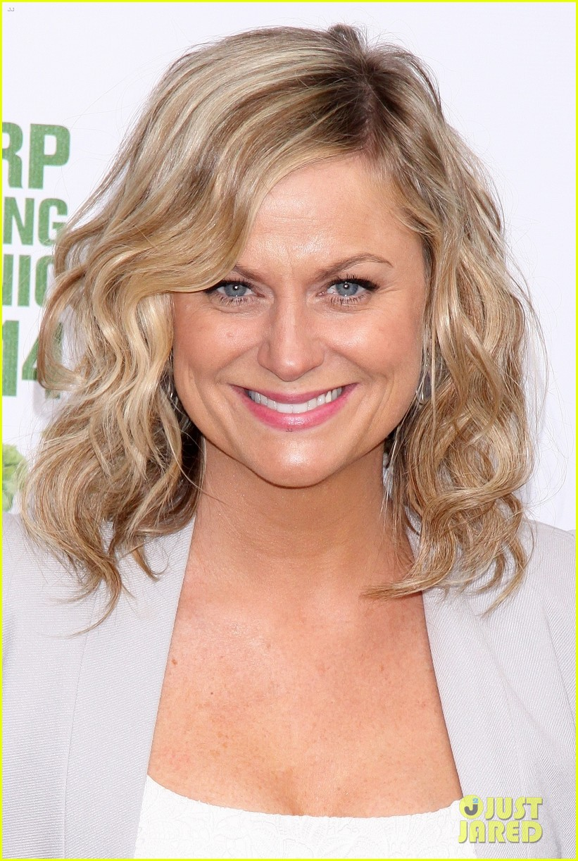 amy poehler drops by bette midler annual spring picnic 17
