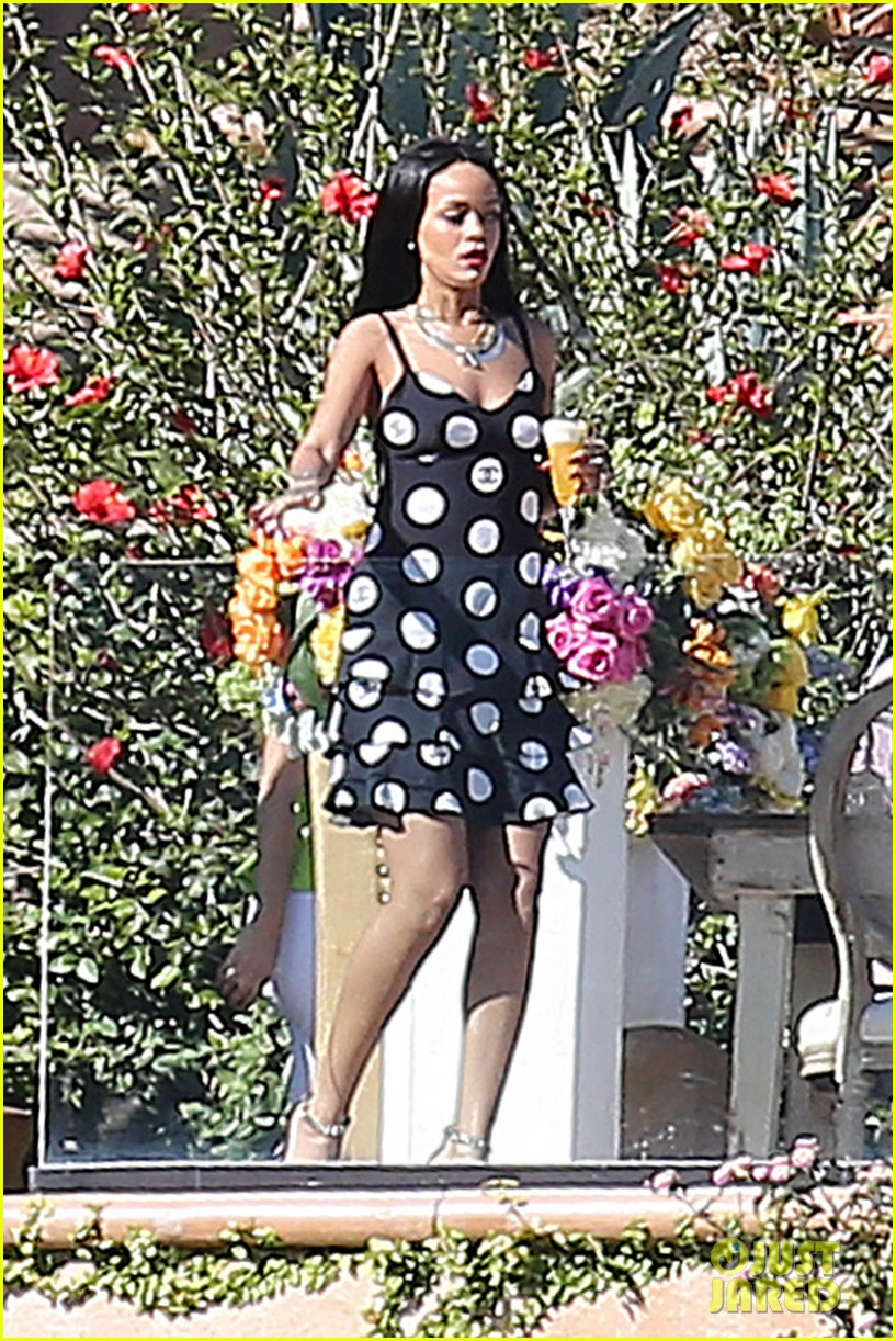 rihanna spends mothers day with family at malibu mansion 053111574