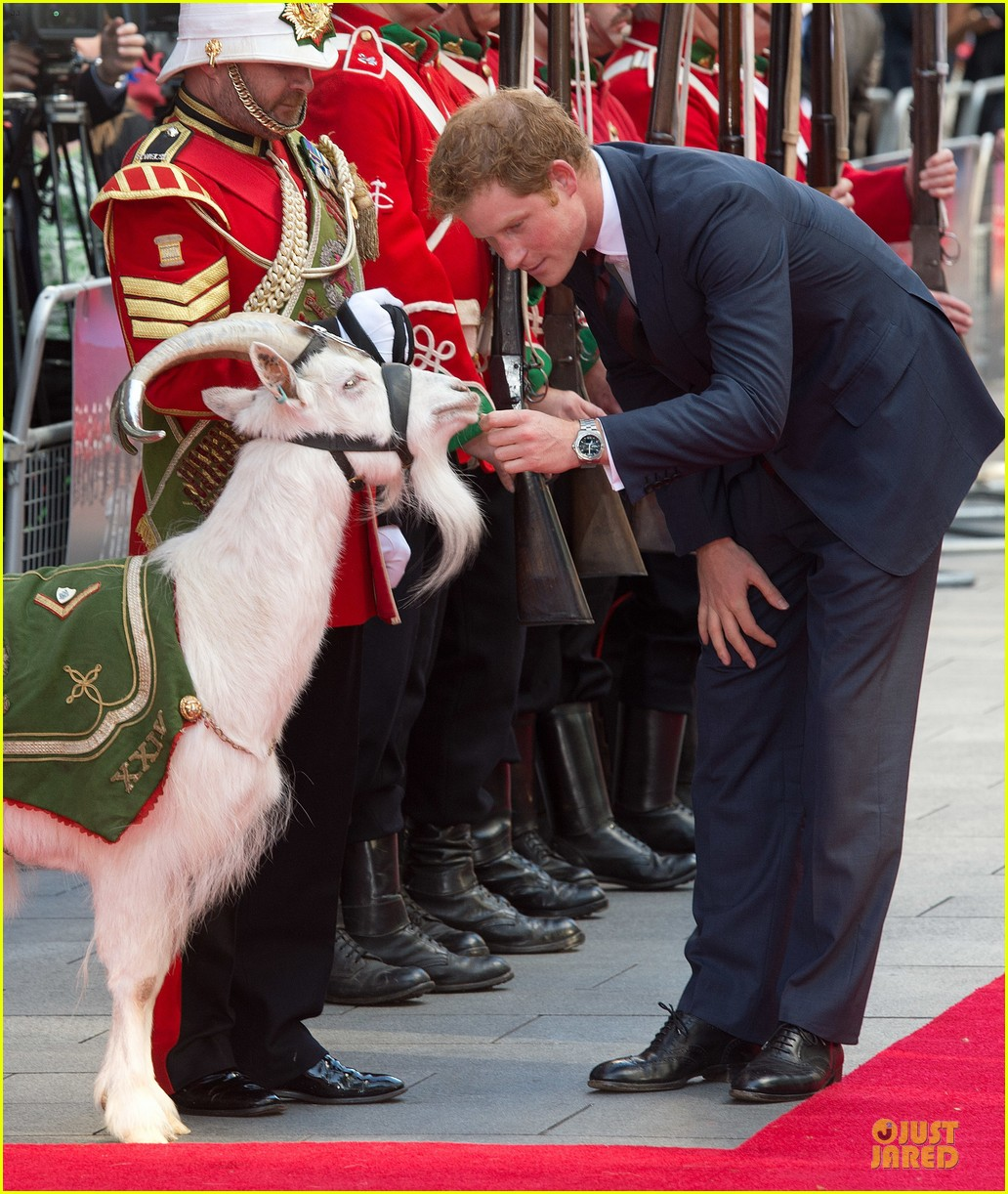 prince harry interaction with goat melt your heart 03