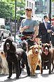 daniel radcliffe dog walker trainwreck nyc set 11